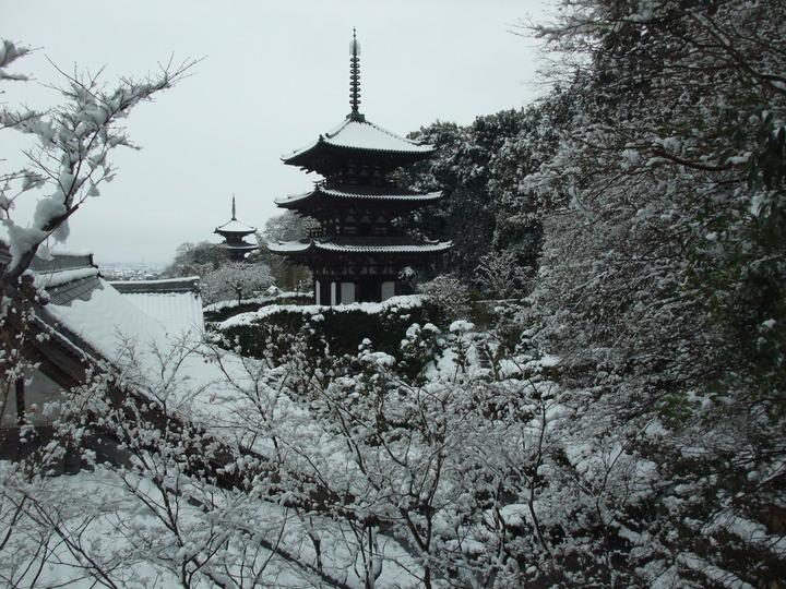 當麻寺雪化粧 西南院から両塔1  11 2.11(大)