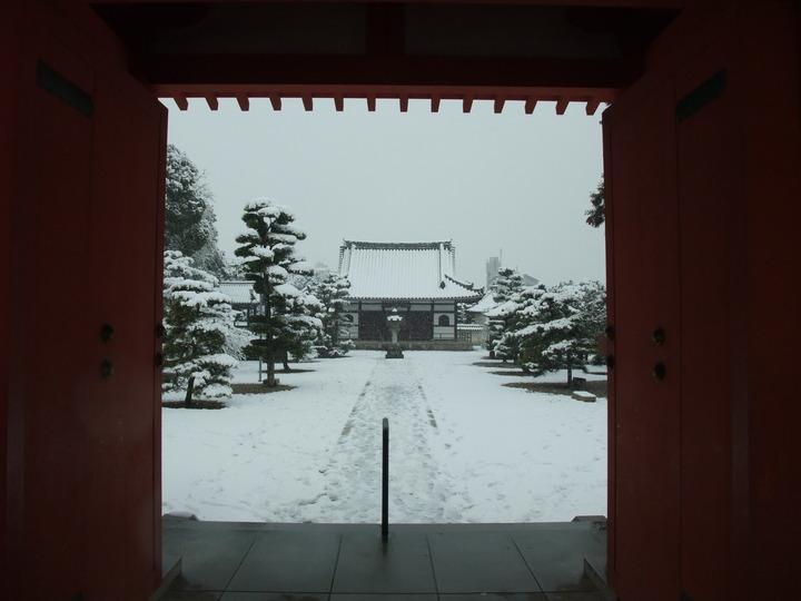 野中寺仁王門から本堂 雪化粧 (大)