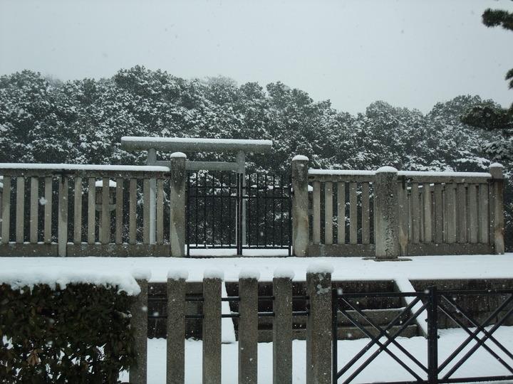 岡ミサンザイ 拝所 雪化粧  (大)