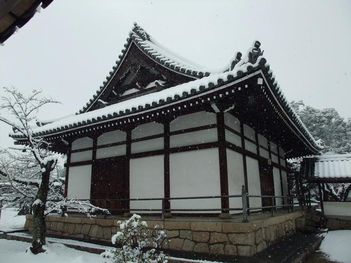 野中寺本堂 北東からから近景 雪化粧 (大)