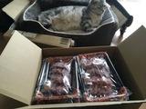 赤身需要にお応え! A5鹿児島県産黒毛和牛赤身ステーキ&焼肉セット