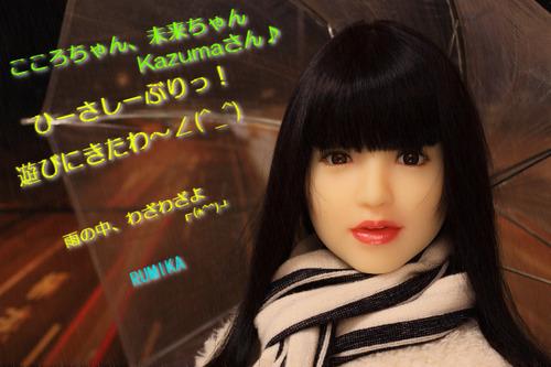 20141121_kazumasan_e