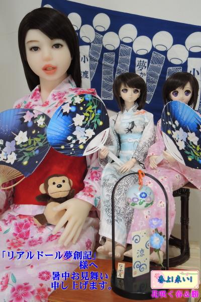 haru_2013syochumimai