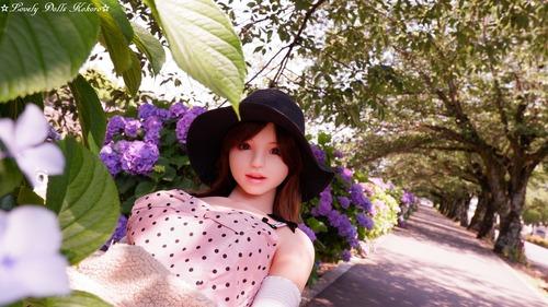 Hatano3-lovely dolls