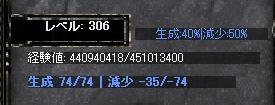 306.jpg