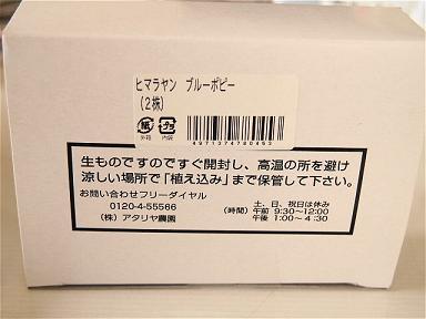 P3140921-2.jpg