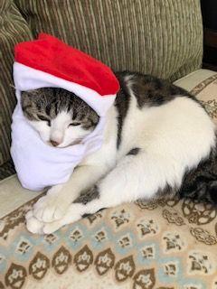 キークリスマス