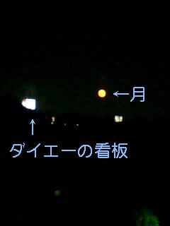 img20071126_1.jpg