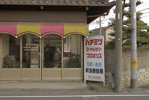 shinkai1