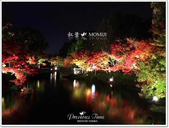 IMG_0718_momiji_SB3