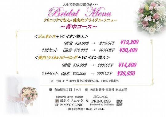 2016 bridal2