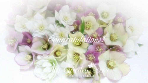 DSC_1728_H_Congratulations