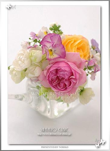 rose2010_0121cl400l.jpg
