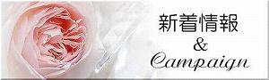 新着情報_キャンペーン300W