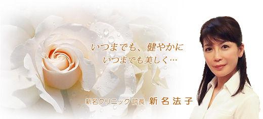 white_rose_dr_noriko_AAAA_2clear