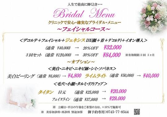 2016 bridal1