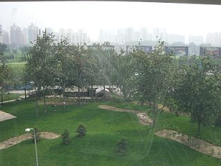 060706-garden.jpg