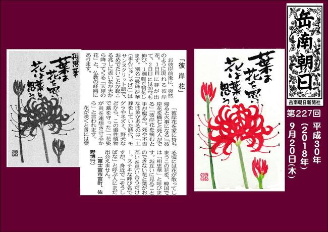 300920彼岸花(岳南新聞)