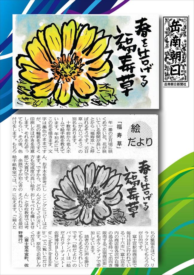 310117福寿草(岳南新聞)