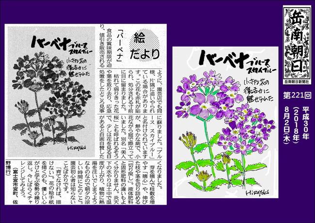 300802バーベナ(岳南新聞)