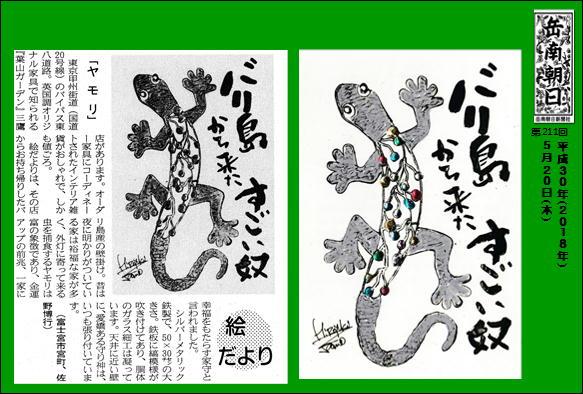 300524ヤモリ(岳南新聞)