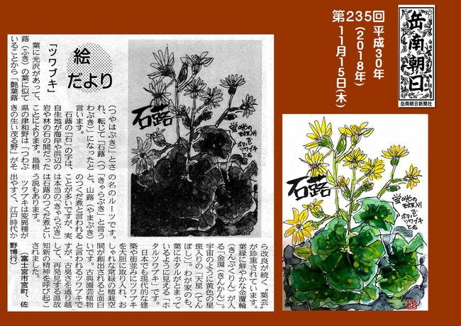 301115ツワブキ(岳南新聞)