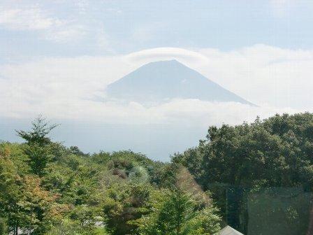 tanuki07.jpg
