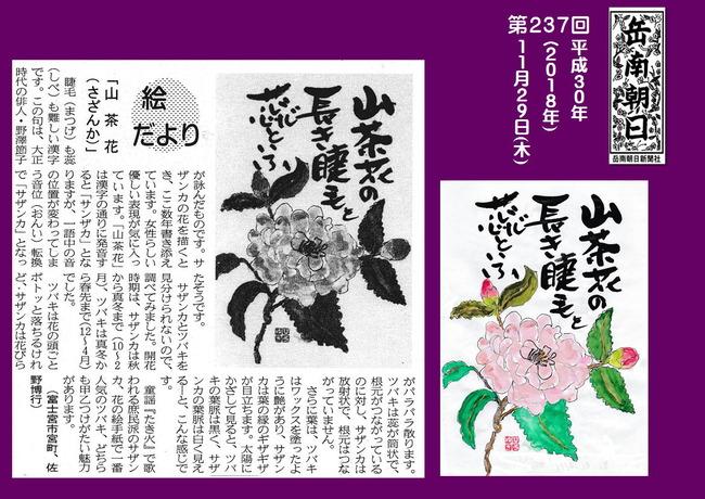 301129山茶花(岳南新聞)
