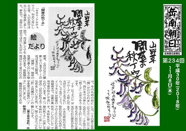 301108関屋の秋丁子(岳南新聞)