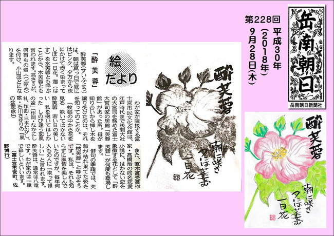 300928酔芙蓉(岳南新聞)