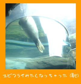 img20080722_1.jpg
