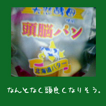 img20060117_2.jpg