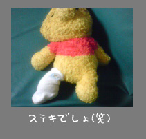 img20080126_1.jpg