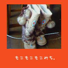 img20051017.jpg