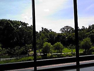石橋美術館窓から