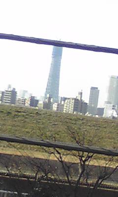 img20100118.jpg
