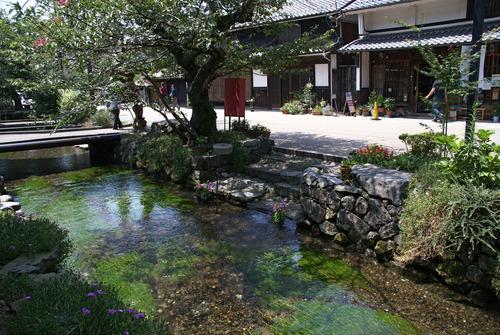 61 地蔵川 Samegai02s3872