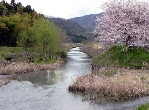 DSCN4476-1000 小谷山の麓 田川