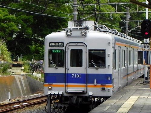 DSCN1533-1000
