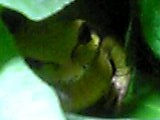 img20050414.jpg