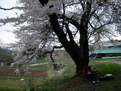 2010-04-11-6