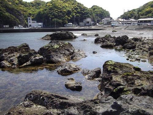 小稲湾 引き潮