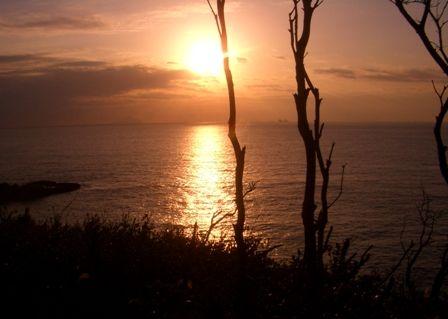朝の竜宮窟崖の上1125