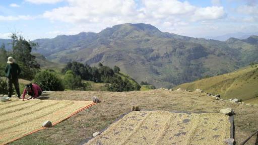 2009maurefo1.jpg