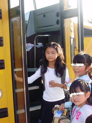 bus-k.jpg