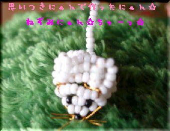 DSC025750012.jpg