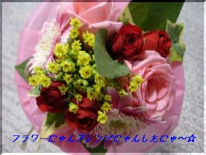 DSC024810001arenji_1.jpg