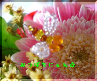 DSC025630004.jpg