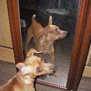 2005.09.05-4.jpg