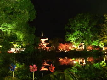 11-23大覚寺2